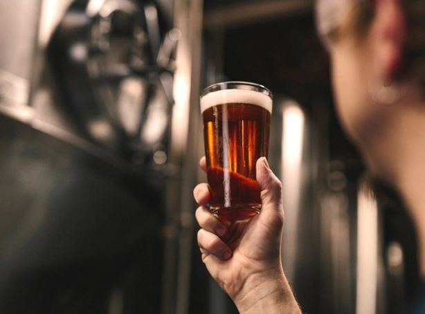 Boise Brewer Examining A Full Glass Of Dark Brown Beer