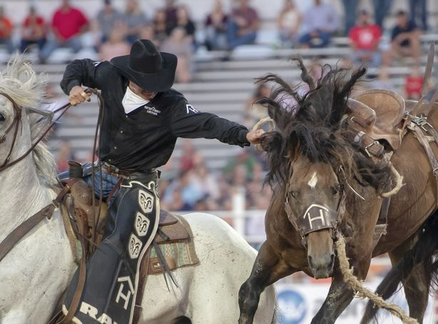 A man on horseback reaches out to gain control of a bucking bronco.